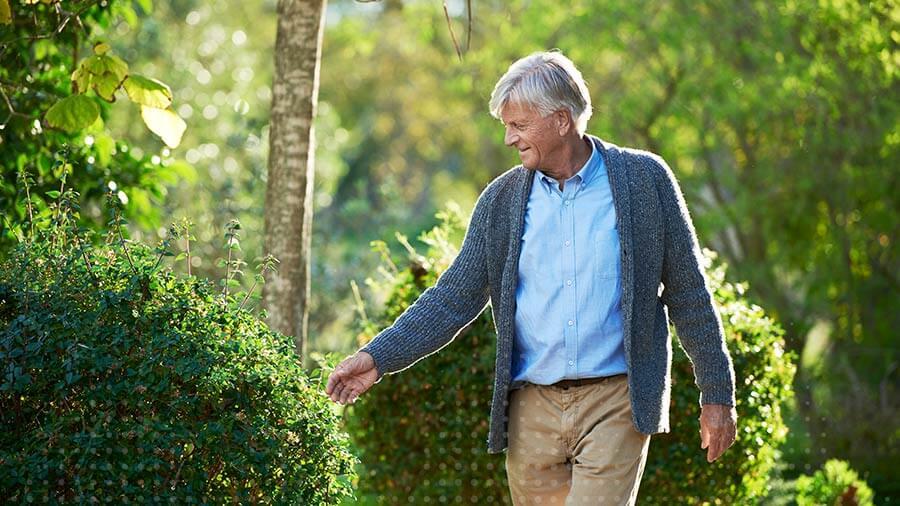 Ein Mann spaziert im Garten