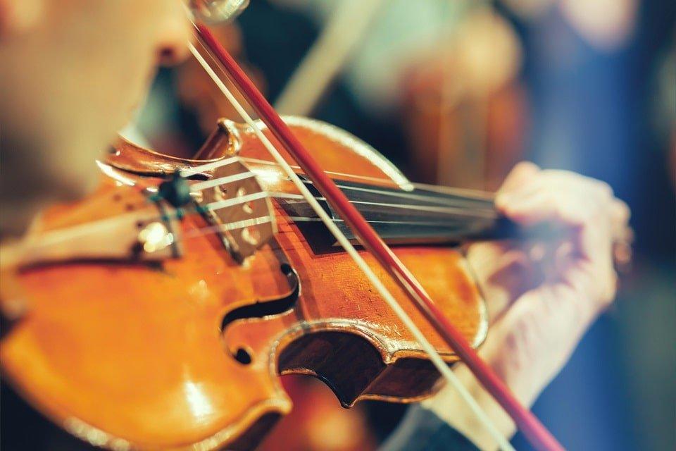 musicien-violon-min