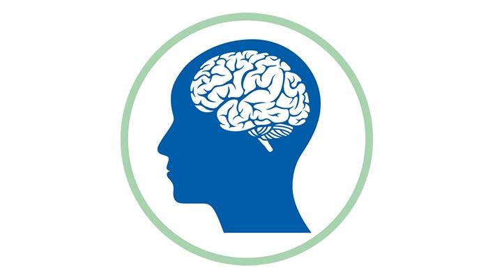 Hörseln är sinnet som förenar oss med omvärlden. Din hörsel är unik, lika unika som dina fingeravtryck. Hur fungerar din hörsel och hur vet du om hörseln är nedsatt? Hur fungerar din hörsel och hur hör vi med hjärnan?