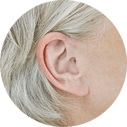 Witch_part_of_the_ear_is_affected_250x250