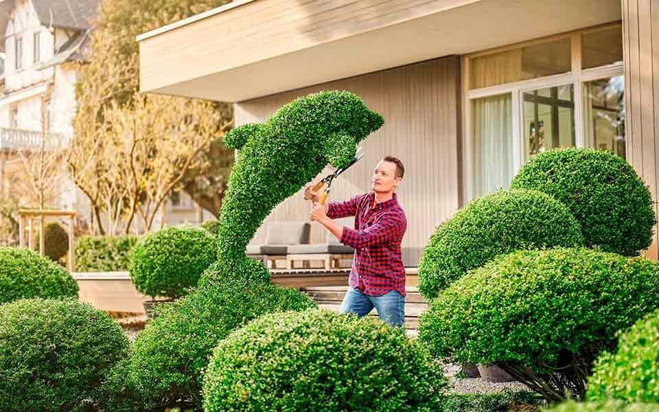 Homme avec les aides auditives Bernafon Leox Super Power | Ultra Power taillant spontanément un buisson de jardin en forme de dauphin.