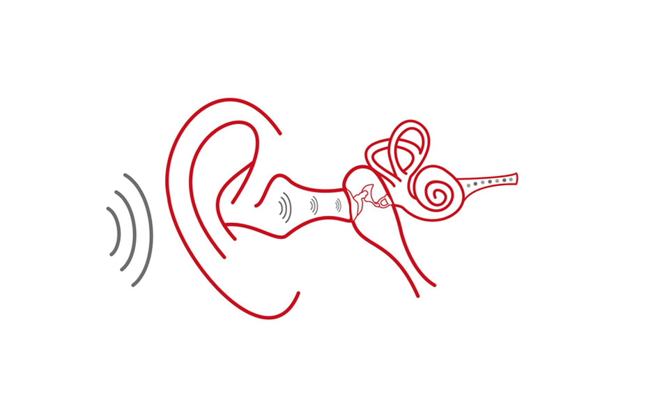 ear_anatomy_with_sound_waves-min