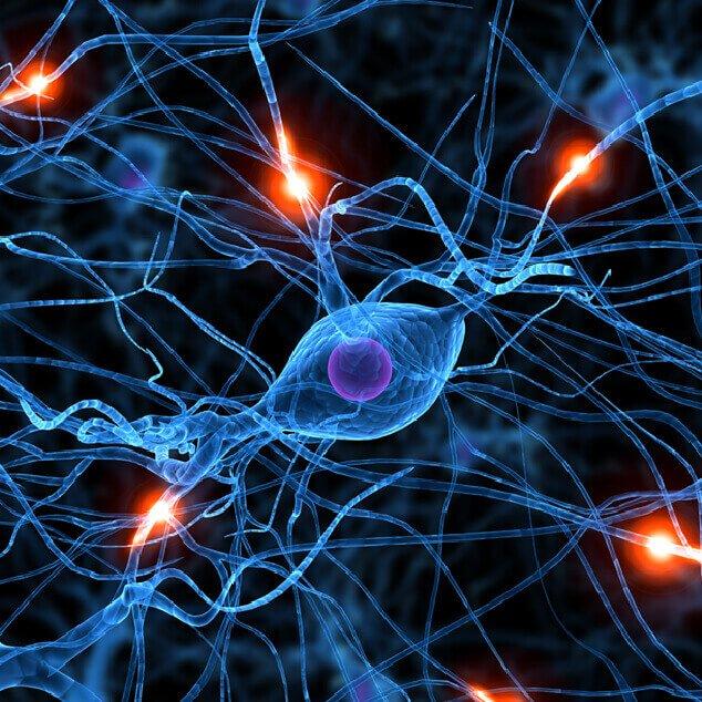 udito-cervello-maico-imagespot-1