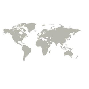 310x310-worldmap