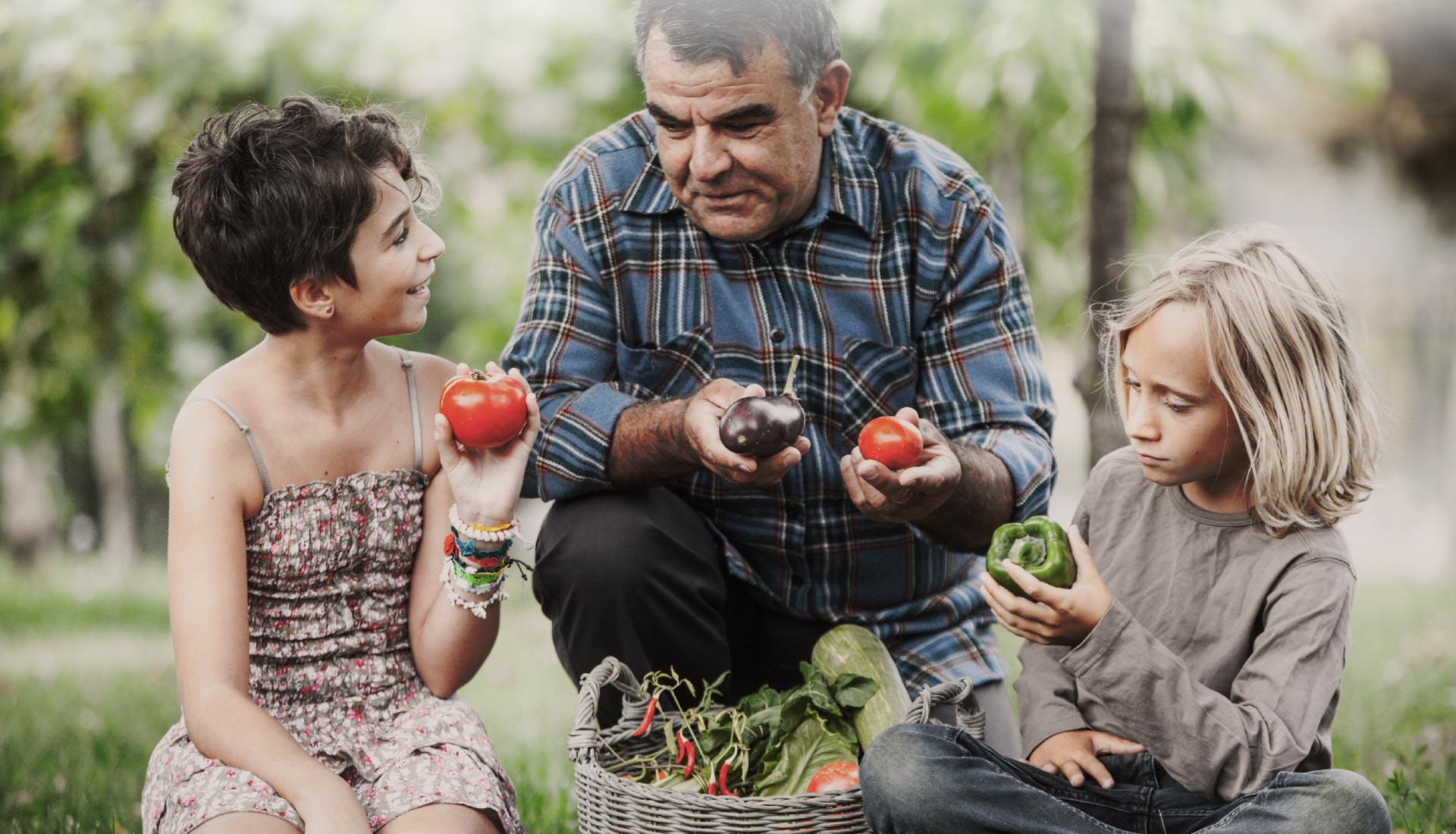 grand-père et ses petites-filles choisissent des légumes dans un panier