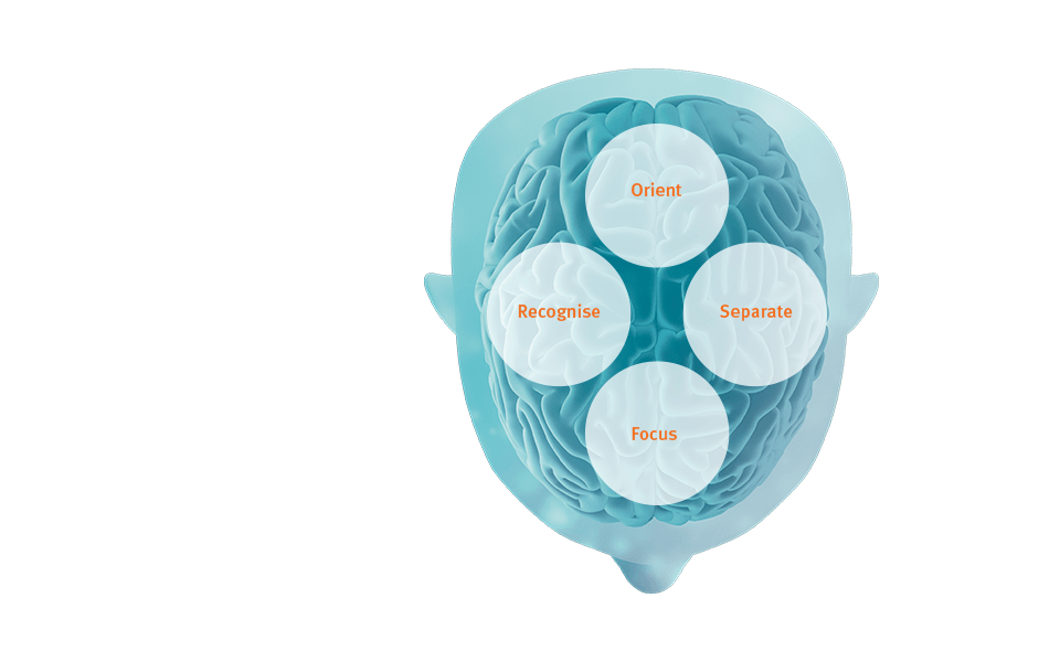 BrainHearingª provides audibility and signal processing that support the brain's cognitive processes.