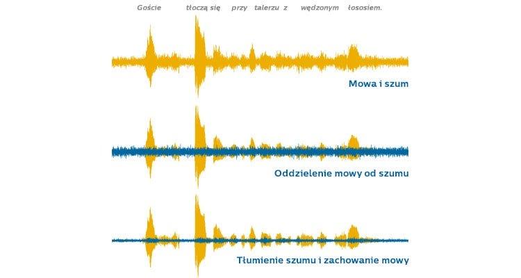 noise_in_speech_pl_750x400